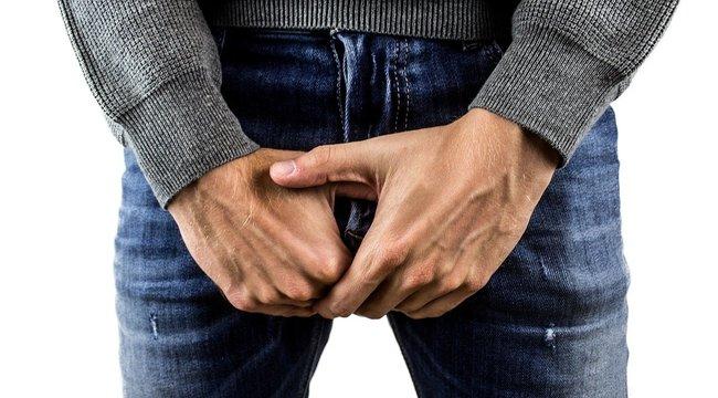 erekció jelenik meg és gyengül