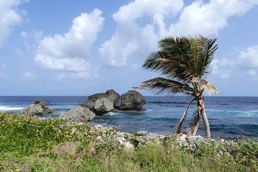 + Best Tengerparti fotók images in   tengerparti fotók, fotó, tengerparton