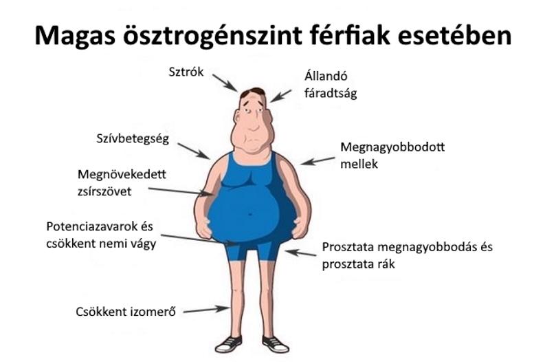 csökkent erekció a prosztatában)