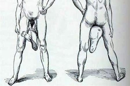 hány centiméter a leghosszabb pénisz