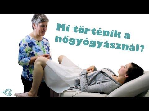 AlvóPornó videók szex hub xxx