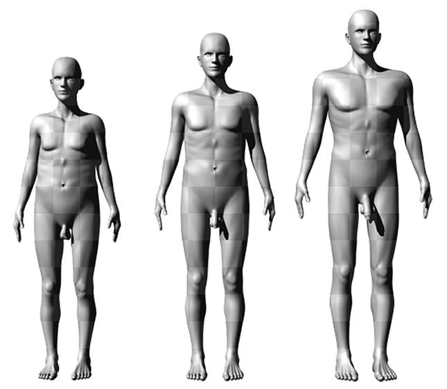 pénisz hosszúságú férfiak)