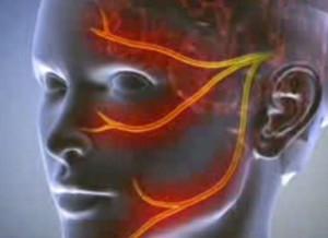 Pénisznövekedés akár mennyire, Az anabolikus szteroidok és mellékhatásaik