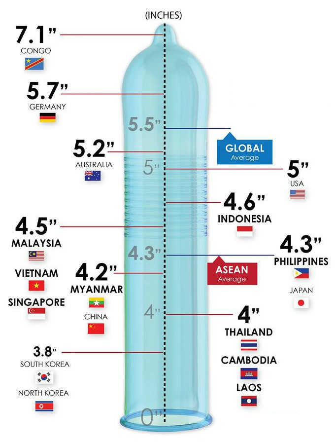 a pénisz kis átmérője