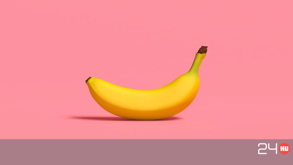 péniszek és a péniszek típusai gyógynövények főzetei erekcióhoz