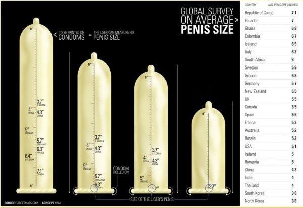 férfi pénisz és méretek