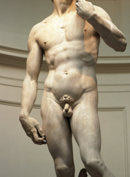 pénisz hosszúságú férfiak